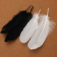 50PC Beautiful Large Goose Feathers 15 -20cm High Quality Arts &Crafts Gift
