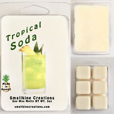 Tropical Soda Pineapple Mountain Apple Scented Soy Wax Melts 3oz Hawaii