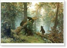 Morning in a Pine Forest. Shishkin. Fine Art Print New, Glossy paper