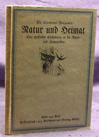 Wagener Natur und Heimat 1913 Geschichte Landeskunde Heimatkunde Geografie sf