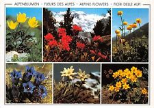 BG18208 alpenblumen fleurs des alpes   switzerland