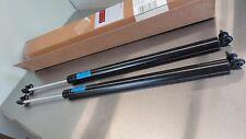 OEM Mopar Factory Set (2) Hatch Lift Support-Liftgate VLNS9600AA Dodge Caravan