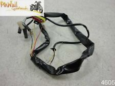 2001-2007 Ducati Monster REAR TAILLIGHT BRAKE LIGHT HARNESS 620 600 400 MORE