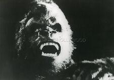 KING KONG  1976 VINTAGE PHOTO ORIGINAL #1