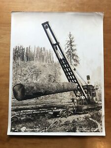 Darius Kinsey Sepia Original Print  Bloedel Donovan Logging C. 1930 Beaver Camp