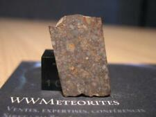 New listing Meteorite Nwa 13147 - Chondrite (L4) with well-delineated packed chondrules