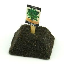 Dolls House Miniature Sorrel Seed Packet With A Stick