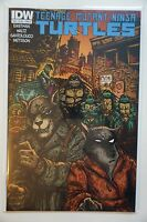 Teenage Mutant Ninja Turtles TMNT #39 (2014) IDW Cover B