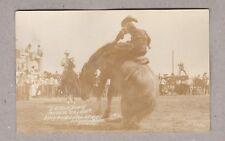 RPPC Real Photo Postcard Rodeo Cheyenne Frontier Days Sittin Down Buckin Dayuse!