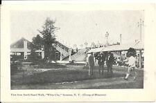 2 Rare Postcards, New York, Syracuse, White City, Railway, Boardwalk View