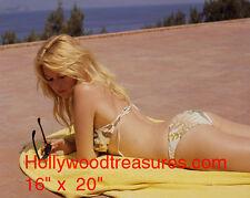 """Brigitte Bardot~Bathing Suit~Color~Photo~Poster~ 16"""" x 20"""""""