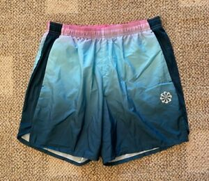 Nike Dry Challenger Pinwheel Running Shorts Ombre Fade Blue Size Large CT7952