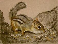 Original Pastel Drawing Cute Chipmunk on Tree Trunk