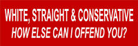 "White Straight and Conservative Anti Liberal Bumper Sticker 9"" x 3"""
