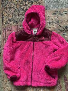 The North Face Toddler Girl 4T Hooded Zip Up Jacket Coat, Pink Fleece Autumn