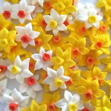 12 DAFFODILS Edible Sugar Paste Flowers Cake Decorations Cupcake Toppers Wedding