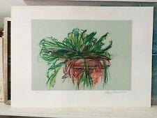 ENZO FARAONI splendida litografia Natura morta fiori quadro + cornice grecoarte