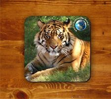 Bengal Tiger coaster - What a wonderful world