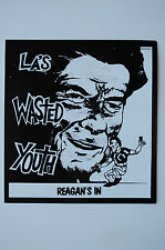 Wasted Youth Sticker Decal (415) Punk Rock Adolescents Germs  Minor Threat