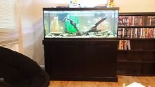 75 gallon freshwater fish tank. Everything included. Great condition.