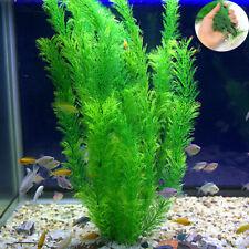 30cm Aquarium Large Artificial Ornament Fish Tank Water Plant Plastic