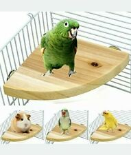 (4B1) Borangs Wood Perch Bird Platform Stand Playground Cage Accessories Small