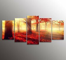 Canvas Wall Art Daydream Red Morning In Forest Home Decor Modern Framed 5 Panels