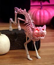 Suono Attivazione Meowing Scheletro Gatto W/Illuminato Occhi Halloween Sostegno