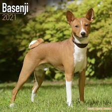 Basenji Calendar 2021 Premium Dog Breed Calendars