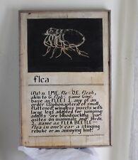 DEFINITION OF A FLEA WI Folk Art Signed Outsider Unusual Original Painting