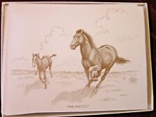 Boxed Note Cards Horses with 10 Cards & 10 Envelopes Per Box