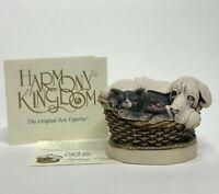 Vintage Harmony Kingdom 1999 'Pecking Order' Dog Cat Mouse & Turtle Box Figurine