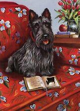 Precious Pet Note Cards - Scottish Terrier Lil Einstein ~ Charity!!