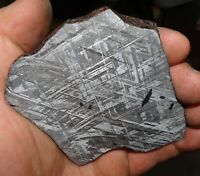 BEAUTIFUL LARGE 204 GM ETCHED GIBEON METEORITE SLICE FROM NAMIBIA