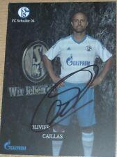 Olivier Caillas - FC Schalke 04 / Alemannia Aachen / Fortuna Düsseldorf