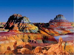 "19"" TALL Rainbow Land Waterproof Aquarium / Vivarium Background Poster Picture"