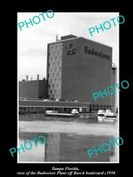OLD LARGE HISTORIC PHOTO OF TAMPA FLORIDA, THE BUDWEISER BEER PLANT c1950