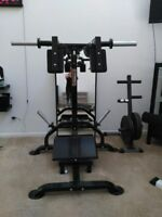 POWERTEC LEVERGYM SQUAT CALF