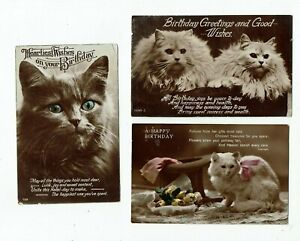 THREE REAL PHOTO GREETINGS POSTCARDS SHOWING CATS