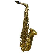 Schiller Elite V Reno Raw Brass Alto Saxophone