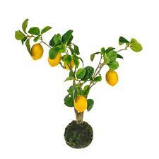 Artificial Lemon Tree Decoration 58cm