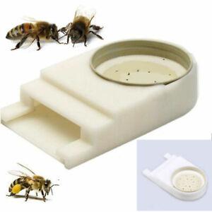 UK Harvest Honey Bee Beehive Entrance Drinking Beekeeping Water Feeder White
