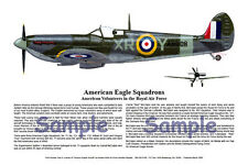 Spitfire, American Eagle, Signed by Ace, Aviation Art Print, Ernie Boyette