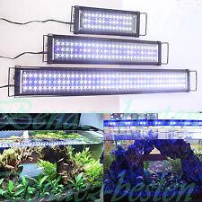 IP67 30-150cm LED Aquarium Beleuchtung Aufsetzleuchte Klemmleuchte Abdeckung DHL