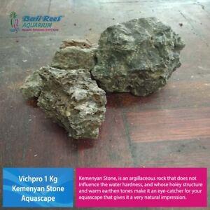 Vichpro 1 Kg Kemenyan Stone Fish Tank Aquarium Aquascape Iwagumi Reptil Tank