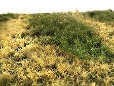 Polak Wild Meadow 4708 Model Grass RR Railroad Terrain Scenery Mini Diorama Mini