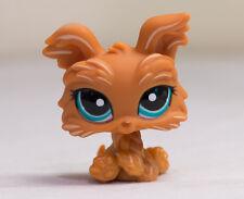 *Littlest Pet Shop* LPS #1407 Brown Yorkshire Terrier Blue Eyes