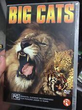 Big Cats region 4 DVD (animal documentary)