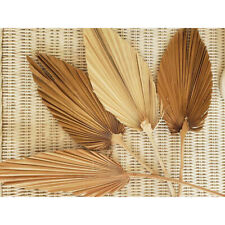 Natural Dried Flower Palm Leaf Branch Simulation Plant Bouquet DIY Home Decor
