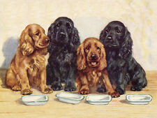 COCKER SPANIEL DOG GREETINGS NOTE CARD FOUR DOGS WAITING BY THEIR FOOD BOWLS